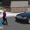 Pedestrian Hit Visual Forensics